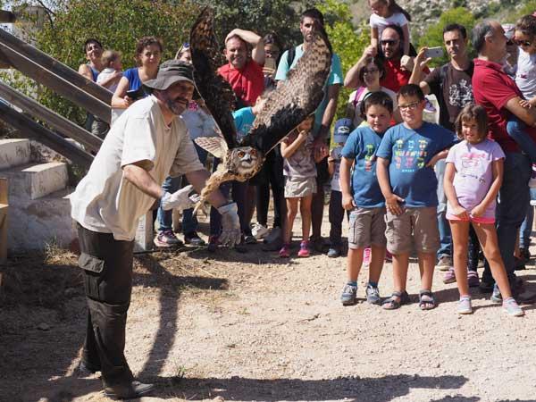 Ibi celebra el Día Internacional de las Aves  en la Estación Biológica Torretes