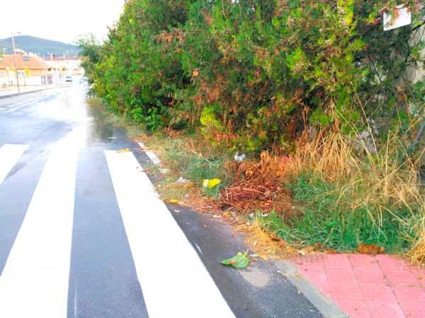 Compromís pide la retirada de matorrales y de semáforos en desuso