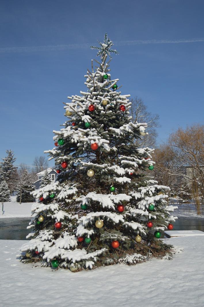 Impulsa tu negocio también en Navidad