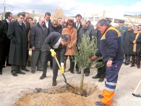 El PSOE pide que se retire la placa del olivo que plantó Camps en Ibi
