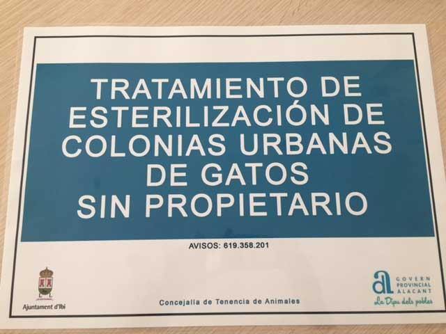 La Protectora i l'Ajuntament inicien la campanya d'esterilització de gats de carrer a Ibi