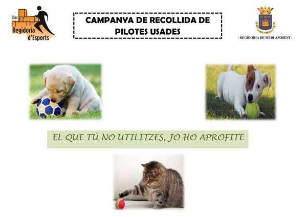 Campanya a Biar de recollida de pilotes usades per a la protectora d'animals