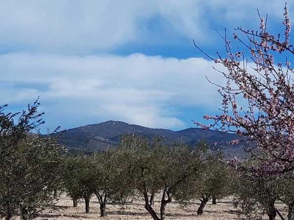 Finaliza el invierno más seco de los últimos veinte años en la comarca