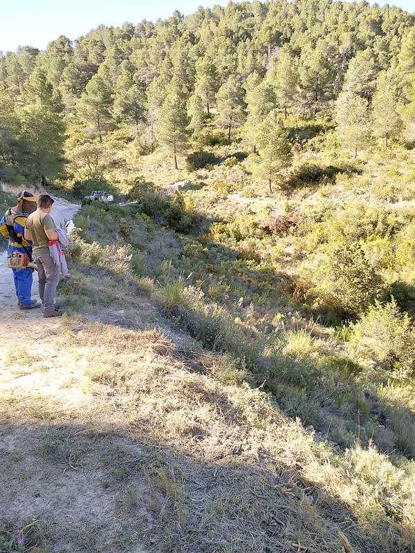 Ibi inicia el mantenimiento de las áreas de cortafuegos dentro del Plan contra incendios