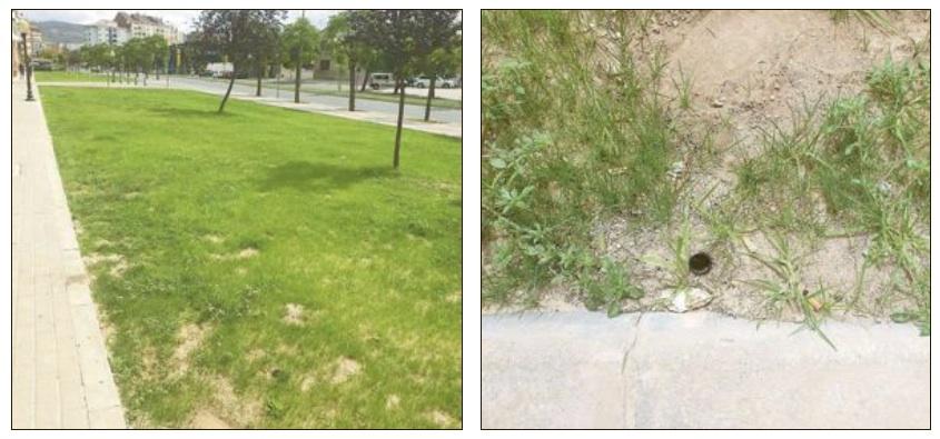Roban una veintena de aspersores de riego recién instalados en varios parterres de Ibi