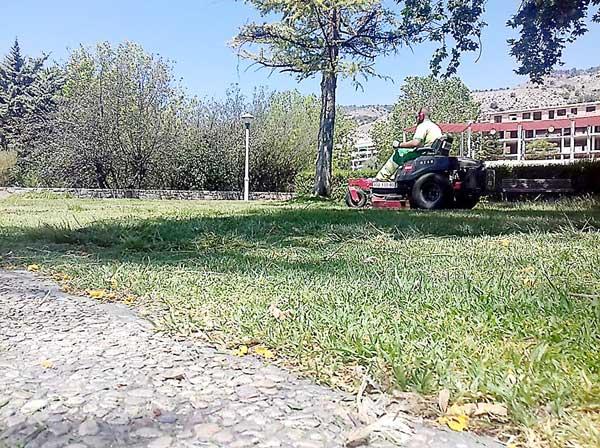 Plan intensivo en Onil de recuperación y mantimiento de zonas verdes